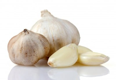 Clove Drawing Garlic Clove Drawing Put The