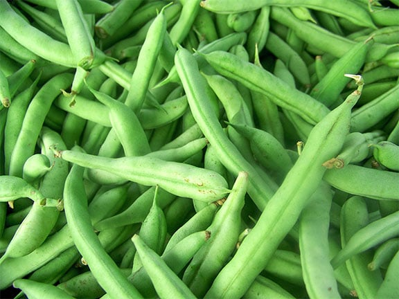 Can You Freeze Fresh Green Beans? | How to freeze your ...