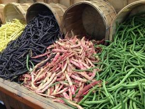 beans-260210_640