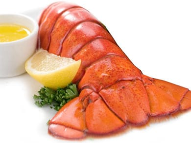 Can You Freeze Lobster Tails? | How to freeze your favourite food?