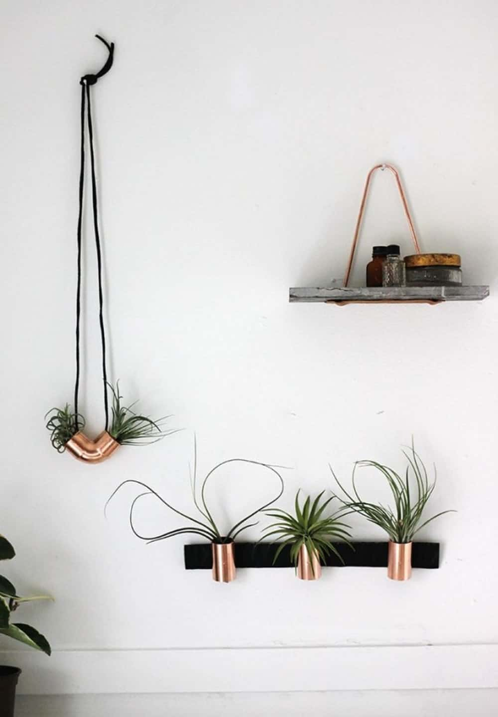 Copper airplant holders diy