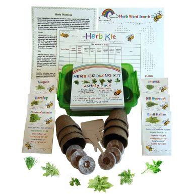 Kids' herb garden