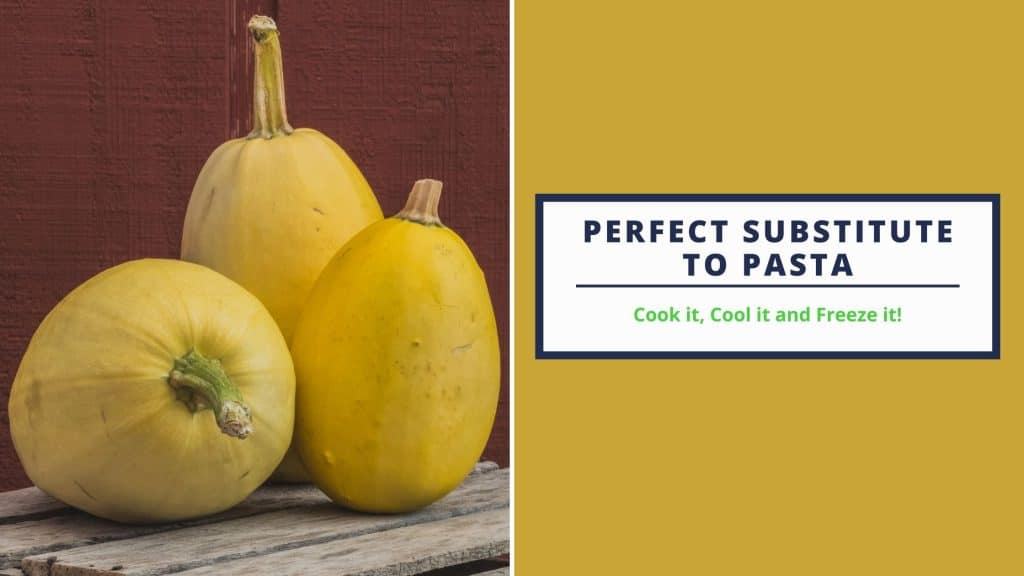 Spaghetti squash is the perfect substitute to pasta