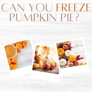 "A banner witht he words ""can you freeze pumpkin pie?"""