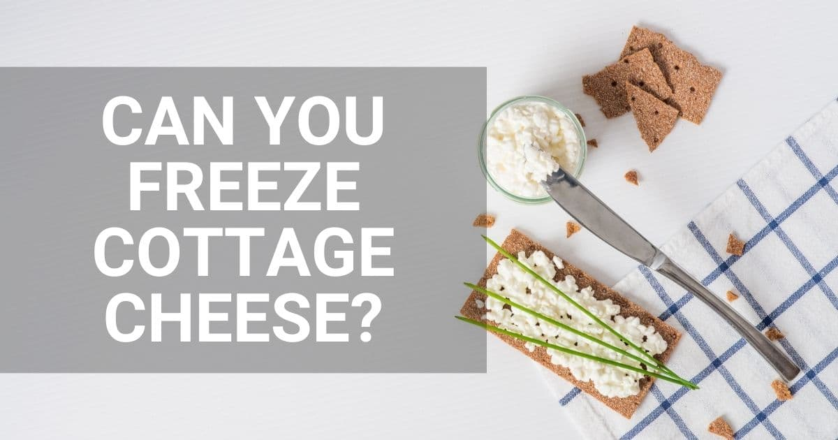 """A blog banner with the words """"can you freeze cottage cheese?"""""""