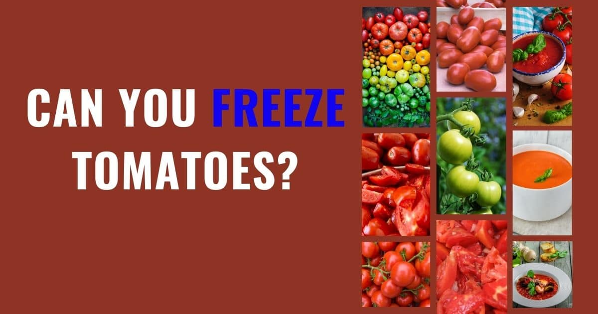 """A banner with the words """"can you freeze tomatoes"""", and a variety of pictures showing that whole and sliced tomatoes can be frozen; as well as any variety of tomatoes."""