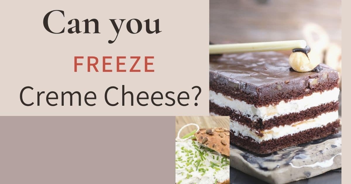 """A banner with the words """"Can you freeze cream cheese"""""""