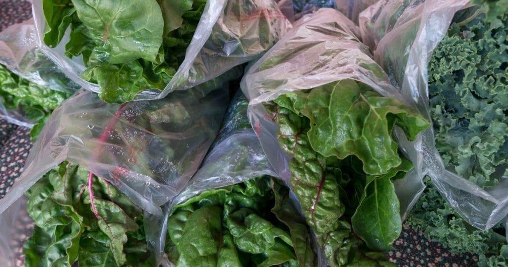 Lettuce in freezer bags