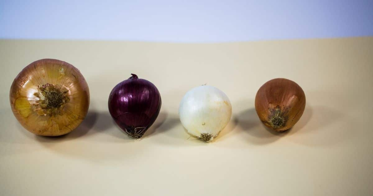 4 different type of onions on a table.