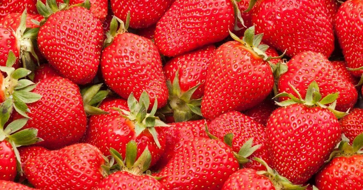 Red yummy strawberries.