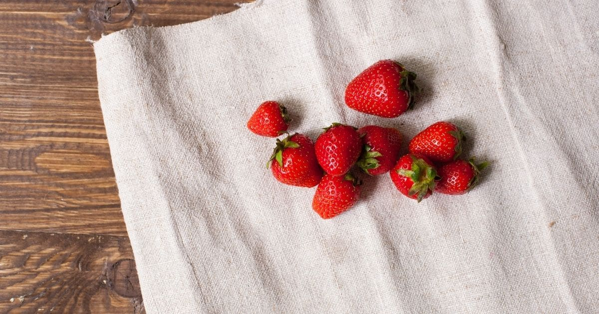 Strawberries drying on a cloth