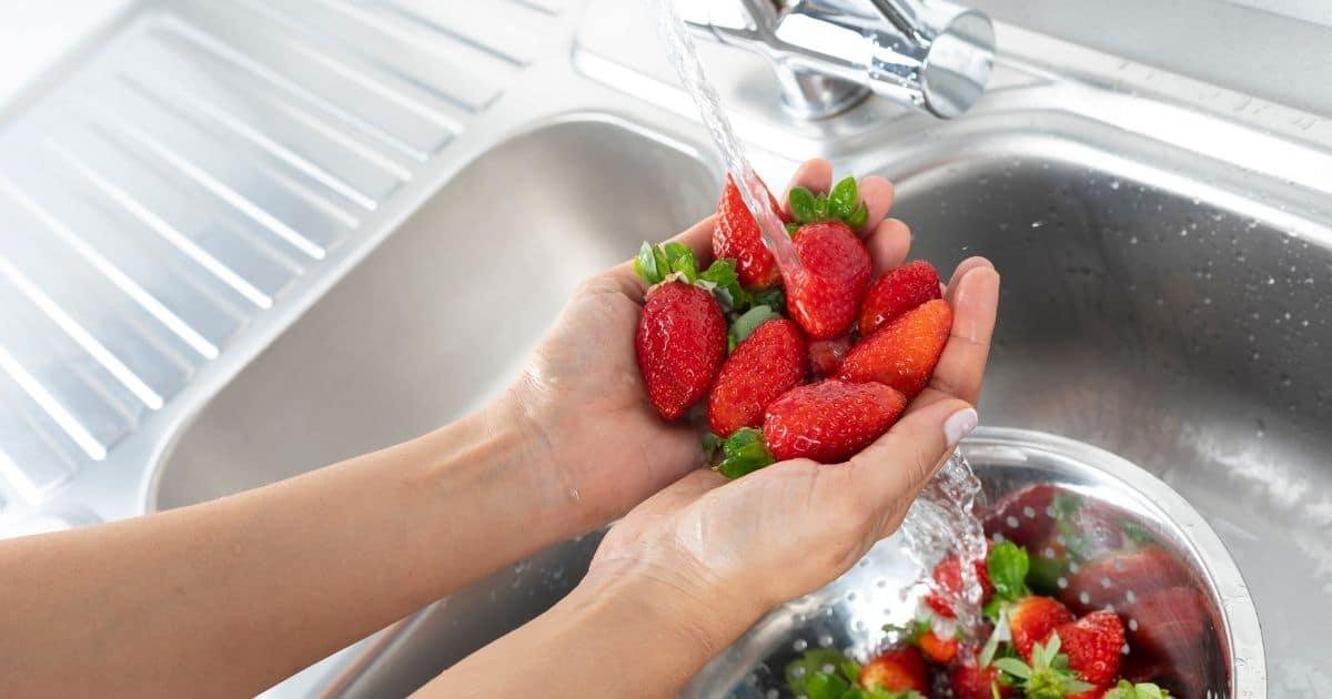 Washing strawberries.