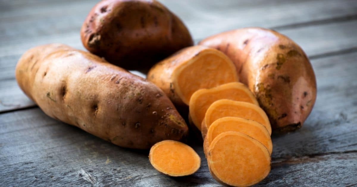 Can you freeze sweet potatoes? Yes, you can here is how!